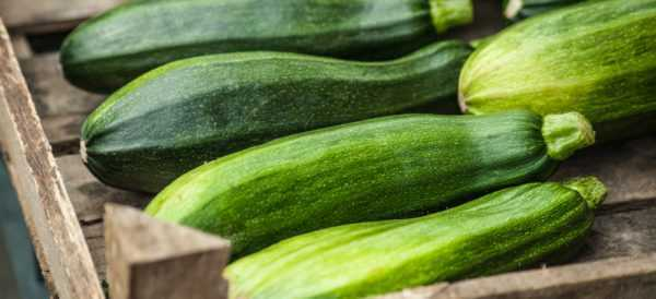 Calorie zucchini and its composition