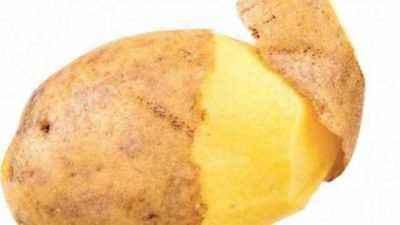 Characteristics of Lilya Potato