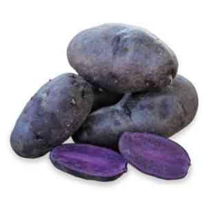 Characteristics of Molly potatoes