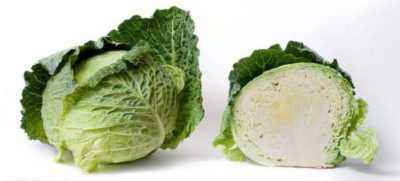 Characteristics of Savoy Cabbage