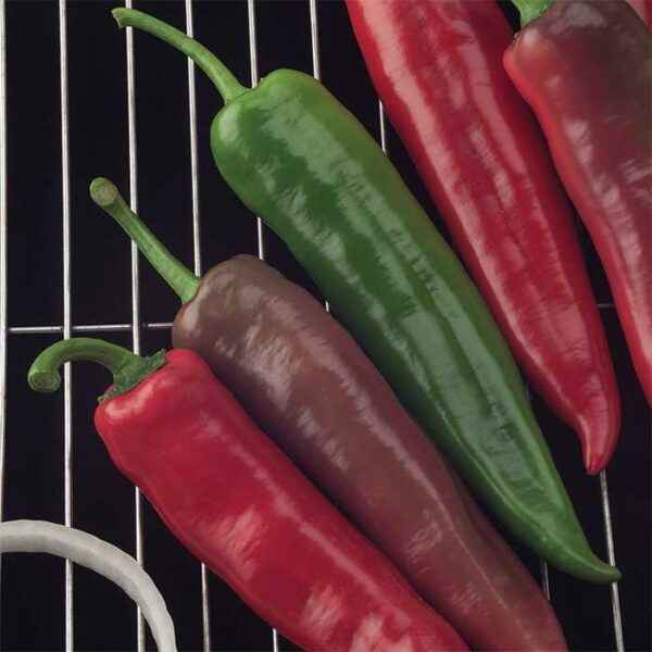 Characteristics of the variety of Goliath peppers