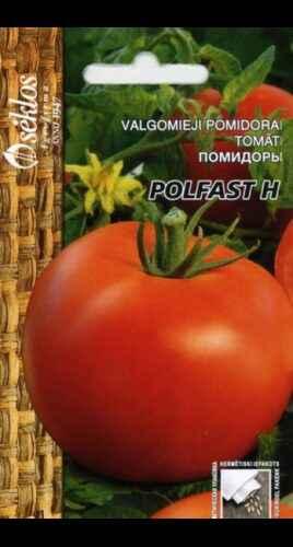 Characteristics of tomato varieties Polfast f1