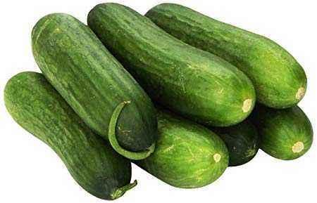 Description of cucumber Conductor