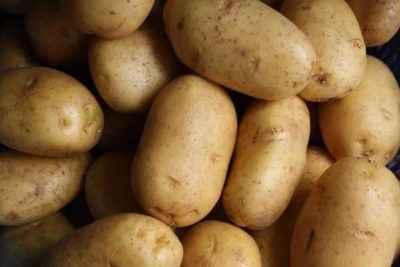 Description of Potato Lad