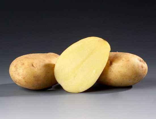 Description of Ramos Potato