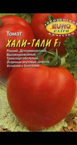 Description of the variety of tomatoes Hali-Gali