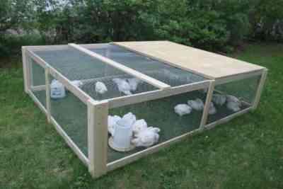 DIY chicken cages