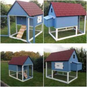 DIY chicken house construction