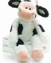 Features of a Teddy Cow
