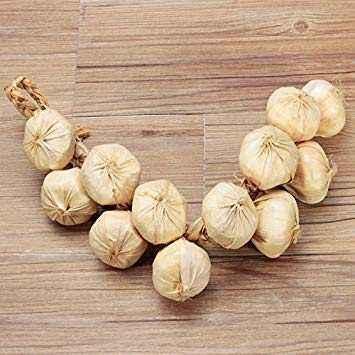 Features of decorative garlic