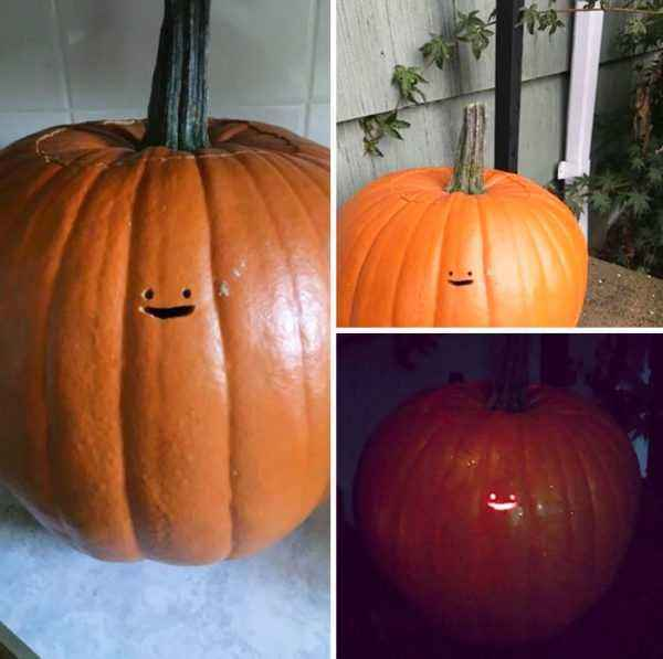 Features of growing pumpkin Smile