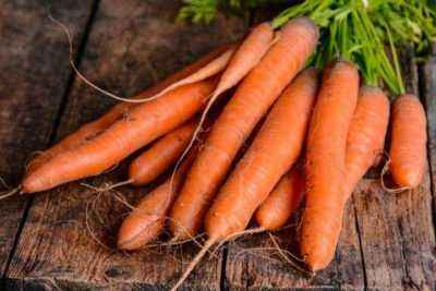 Features of watering carrots after germination