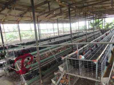 How to make a broiler cage with your own hands