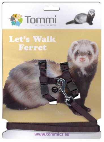 How to make a harness-lead for a decorative ferret do it yourself