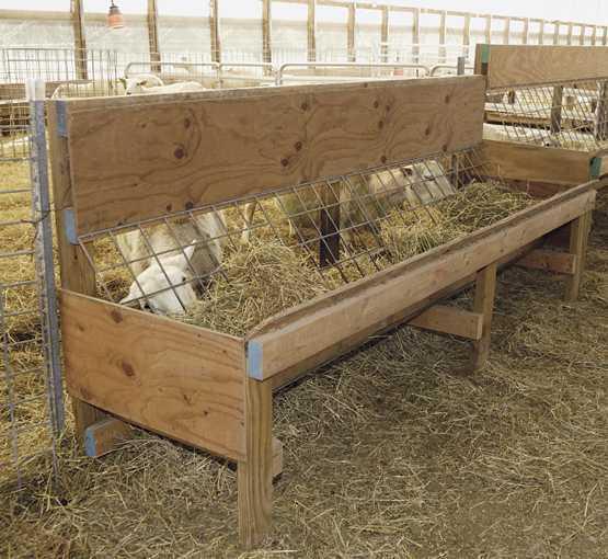 How to make a sheep feeder