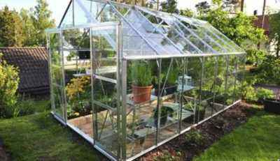 How to shape cucumbers in polycarbonate greenhouses