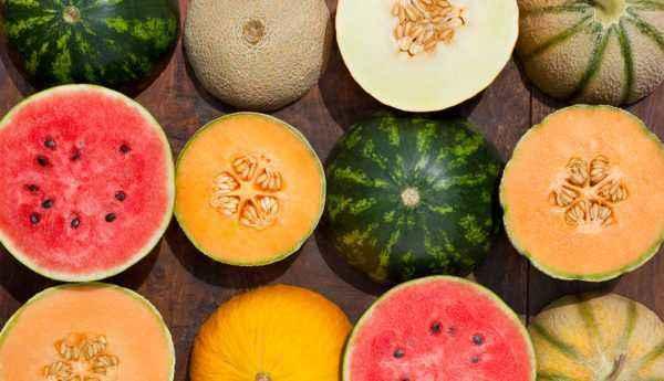 Interesting facts about Melon Pumpkin