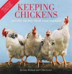 Keeping chickens in the early days of life