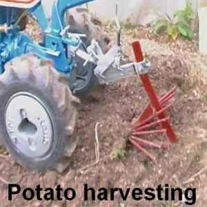 Methods of hilling potatoes with a walk-behind tractor