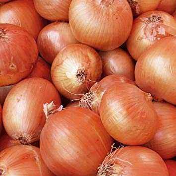 Modern varieties of onion sets
