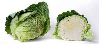 Terms of hilling cabbage