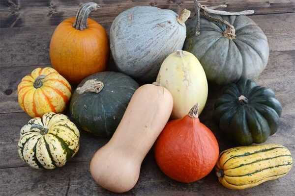 The most common varieties of pumpkin