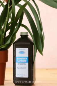 The use of hydrogen peroxide for orchids