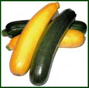 Vitamin composition of zucchini