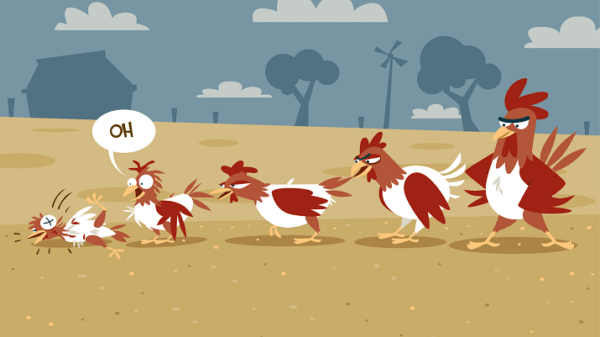 Why chickens and roosters peck each other until blood