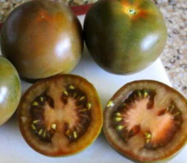 Why do black tomatoes on the bush
