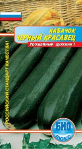 Zucchini Black handsome