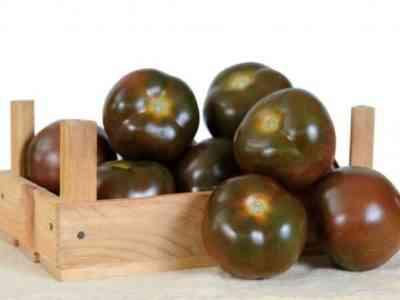 Характеристика томатов сорта Черный Жемчуг