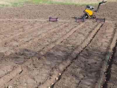 С картофелесажалкой процесс проходит быстрее
