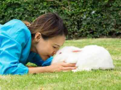 Rules for keeping white and red rabbits