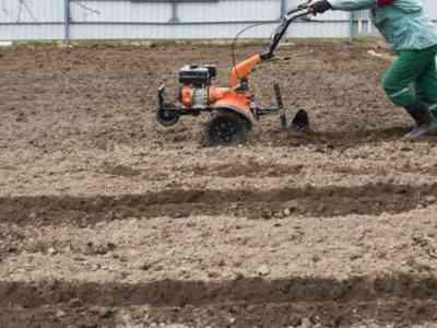 Плуг ускорит процесс посадки картофеля