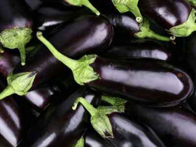 Eggplant Black handsome