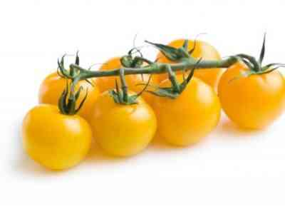 Описание томатов Жемчужина
