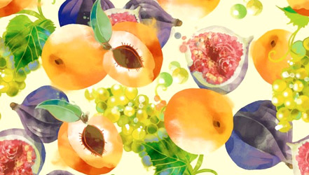 Watercolor painted apricots