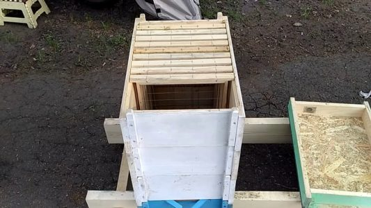 Horned Hive: design and use in the apiary