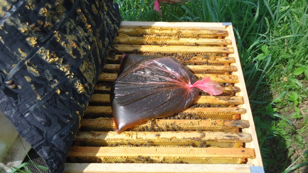 Bee feeders