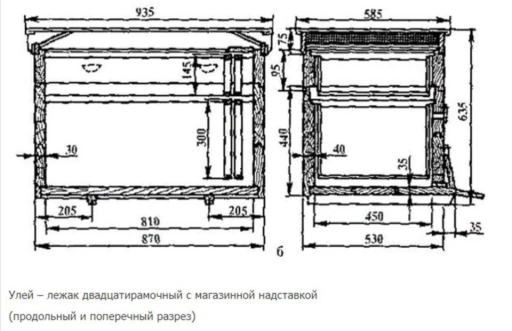 20-frame lounger