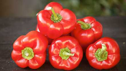Bell pepper, Calories, benefits and harms, Useful properties
