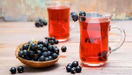 Black currant, Calories, benefits and harms, Useful properties