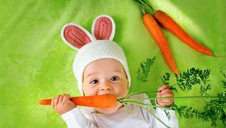 Carrots, Calories, benefits and harms, Useful properties