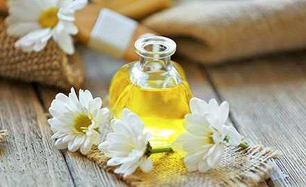Chamomile, Calories, benefits and harms, Useful properties