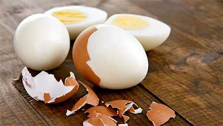 Chicken egg, Calories, benefits and harms, Useful properties