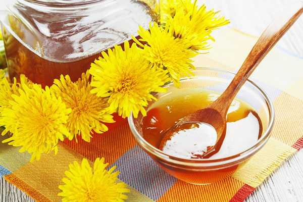 Dandelion honey: benefits, composition and recipes