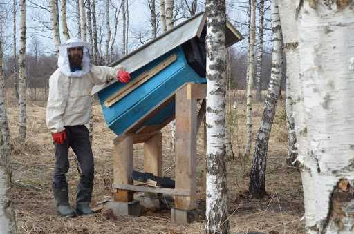 Deck beekeeping: a new look collapsible deck