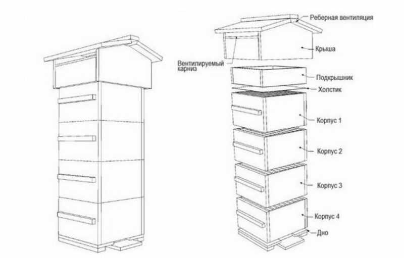 Do-it-yourself Great Russian beehive
