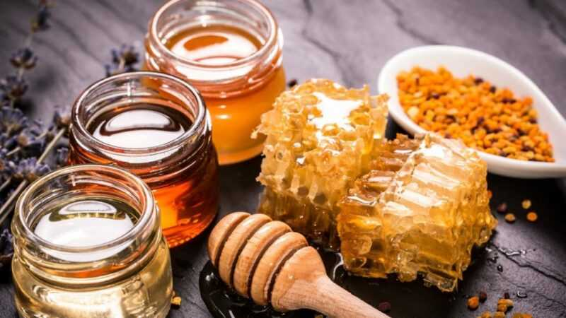 Flower honey: benefits and harms